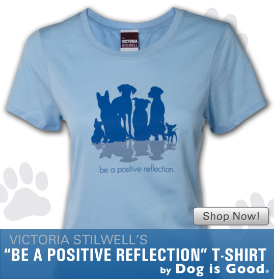 Be A Positive Reflection T-Shirt